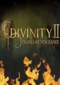 Обложка Divinity 2: Flames of Vengeance