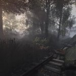 Скриншот The Vanishing of Ethan Carter – Изображение 3