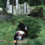 Скриншот The Elder Scrolls IV: Oblivion – Изображение 12