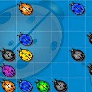 Обложка Beetle Lines
