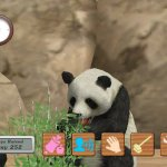 Скриншот My Zoo – Изображение 23