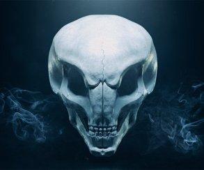 Музыку из XCOM 2 выпустят на виниловой пластинке