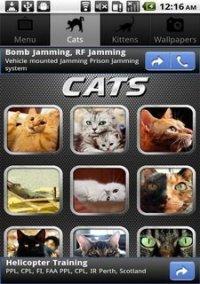 Обложка Cat Puzzles