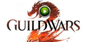 Guild Wars 2. Видео #29