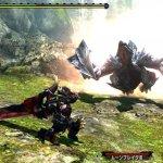 Скриншот Monster Hunter XX – Изображение 2