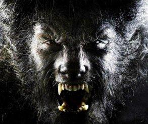 Нового «Человека-волка» пишет автор «Дума» и «Неудержимых»