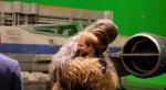 Британские принцы подружились с Чубаккой - Изображение 5