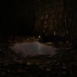 Скриншот The Maze – Изображение 1