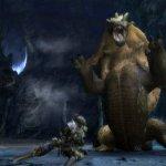 Скриншот Monster Hunter Tri – Изображение 18