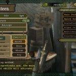 Скриншот Monster Hunter Tri – Изображение 4
