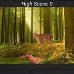 Скриншот Deer Hunting in Jungle – Изображение 4