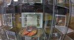 Выкопанные картриджи Atari выставили в итальянском музее - Изображение 8