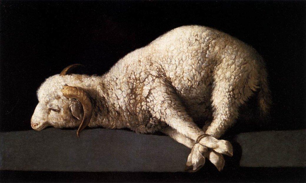 Животная жестокость - Изображение 4
