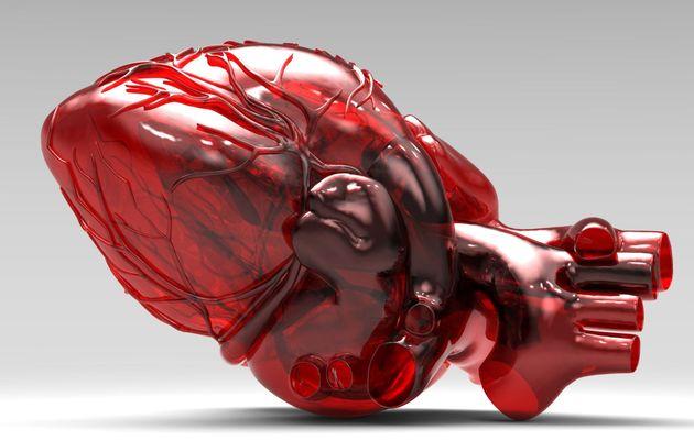 Сделано на 3D-принтере: как отреагирует общество на «печатных» людей? - Изображение 3
