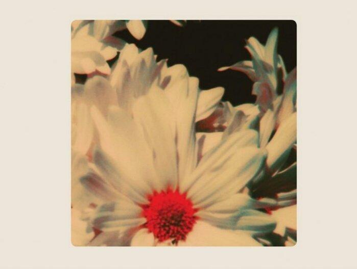 Привычной Ланы большенет. Рецензия на Lana Del Rey— Lust for Life. - Изображение 7