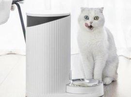 Xiaomi порадует любителей кошек: китайский гигант выпускает смарт-кормушку для домашних питомцев
