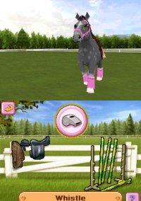 Petz: Pony Beauty Pageant – фото обложки игры