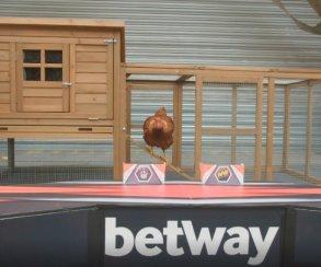 Курица-предсказатель и похожий на Габена фанат. Лучшие моменты 1 дня плей-офф мейджора по CS:GO