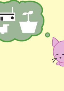 Neko Cat