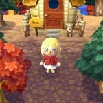 Скриншот Animal Crossing: New Leaf – Изображение 10