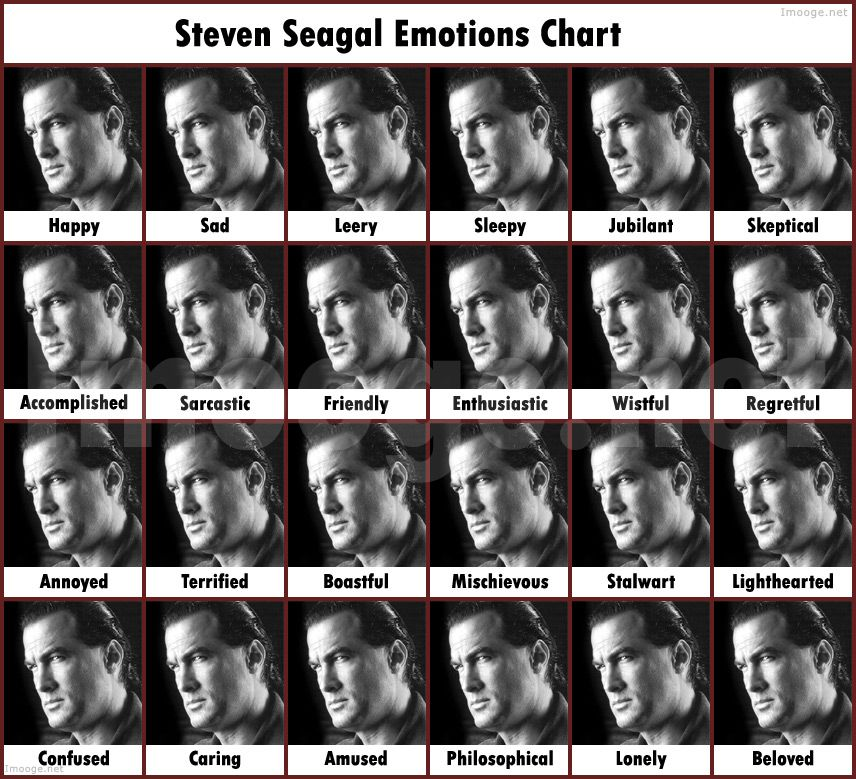 Лучшие драки Стивена Сигала