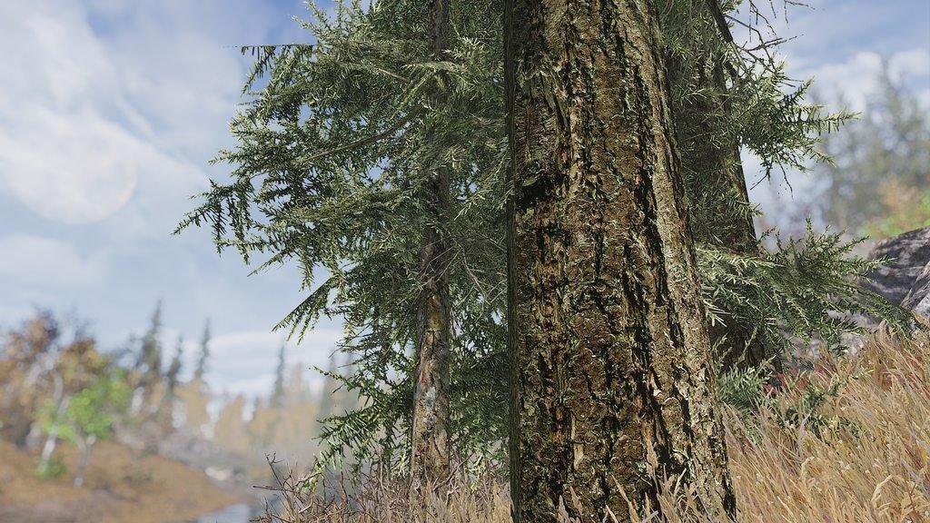 Моддер с помощью реальных фотографий воссоздал в Skyrim финский лес. - Изображение 1